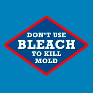 Bleach Does Not Kill Mold