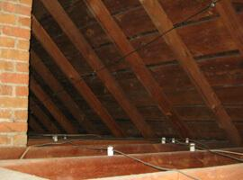 How to remove mold in attic and prevent it from coming back.