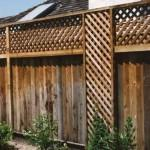 Clean moldy wooden fences with EBB