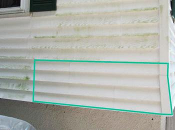 Endurance Bio Barrier prevents mold on vinyl siding.
